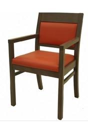 Alpha Arm Chair New