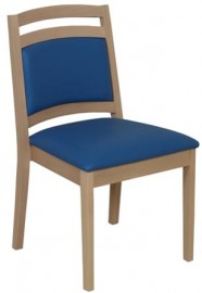 Astor Low Back Side Chair